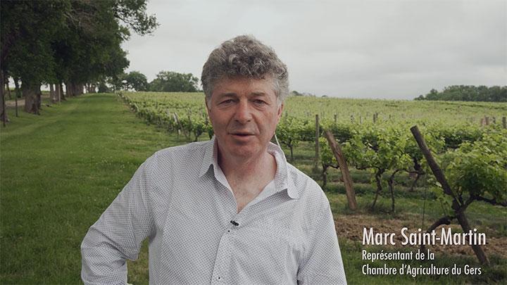 Le plan agroécologique du vignoble Gascogne-Armagnac