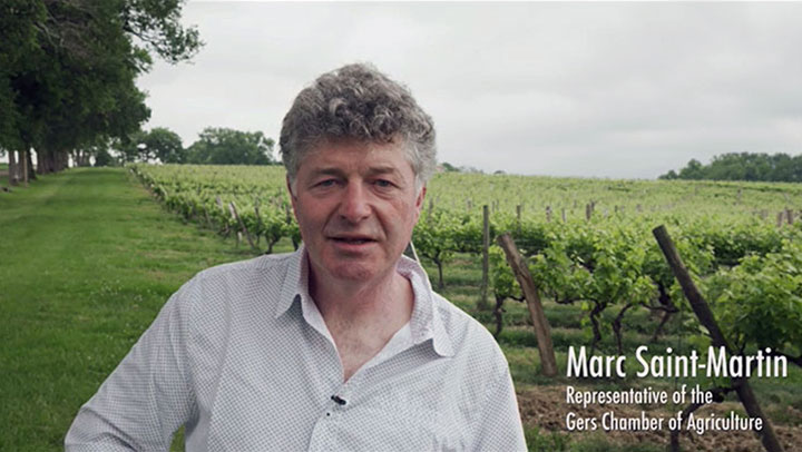 The agroecological plan of the Gascogne-Armagnac vineyard